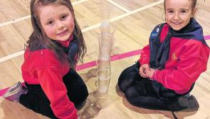 Full STEM ahead:	North Longford Ladybirds among first to complete new STEM badge