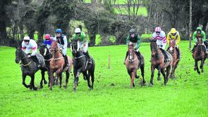 Large crowds take in Co Longford Point to Point