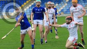 Longford hurlers lose to Louth in missing out on place in Kehoe Shield final