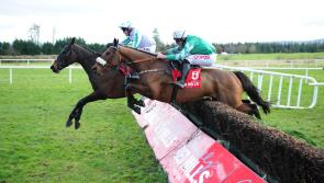 Gold Cup favourite Presenting Percy set for Thyestes Day in Gowran