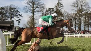 Presenting Percy all set for big return in Gowran Park
