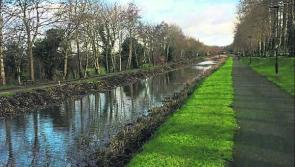 Thumbs up as maintenance works begin on Longford stretch of Royal Canal