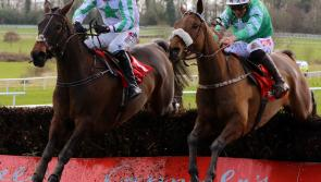 Cheltenham anti-climax for Longford race fans as Presenting Percy's Gold Cup bid flounders