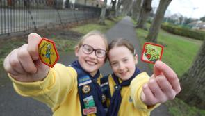 Girl Guides and Brownies in Longford urged to take the Engineers Week Challenge