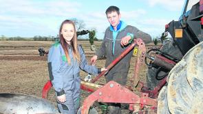 Longford Ploughing Championships: A history of novice ploughing