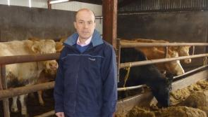 Longford beef farmers could be losing €140 per head on defective grading