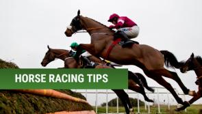 Cheltenham Tips: Five horses that could make you a fortune at Cheltenham 2019