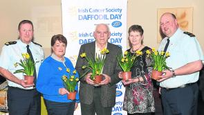 Longford appeal to help cancer patients on Daffodil Day