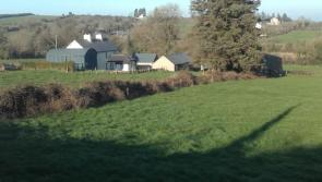 Upcoming auctions in north Longford area