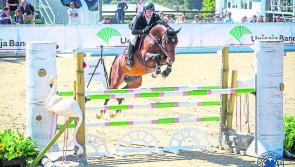 Longford showjumper is living the dream