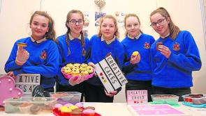 Longford Leader gallery: Moyne CS plait their way to student enterprise awards glory