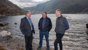 Creed launches new €10m scheme to conserve native freshwater pearl mussel