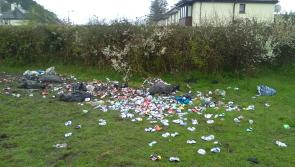 'We will catch you' Ballymahon Tidy Towns group  warns dumpers