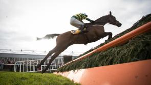 Irish national hunt champion jockey and trainer confirmed as season ends early
