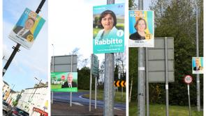 ESB issues poster warning to Longford election hopefuls over 'serious safety risk'
