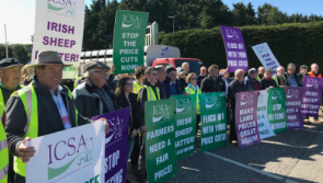 VIDEO| Sheep farmers 'flock' to ICSA protest of falling prices