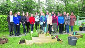 St Christopher's gardeners take on active role in Longford Community garden