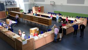 Count Two outcome in Longford municipal district results in elimination of two Independent candidates