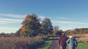 Charity supporting older people seeking Longford volunteers