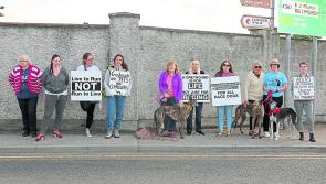 Anti-cruelty activists target Longford greyhound track