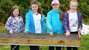 Roving Leader: It is going to be a 'fair' olde day in Ballinamuck