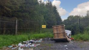 'We are actively trying to stop this', illegal dumping continues in Longford