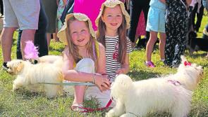 Crowds revel in delights of Ballinamuck Olde Fair Day