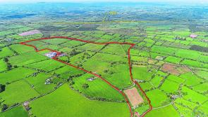 Close to 200 acres in Co Longford set for auction