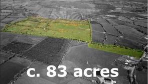 Ballymahon farm sold pre-auction