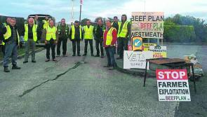 Longford farmers join nationwide protest as Beef Plan Movement up the ante