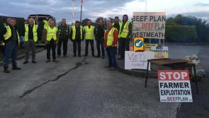 Longford Leader Editorial: Irish beef farmers deserve better