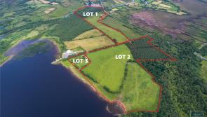 Sherry FitzGerald McGill selling 78 acres of prime agricultural lands in Longford auction