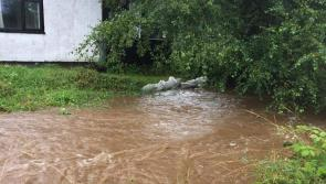 GALLERY | Flooding hell: Ballinalee resident feeling a bit safer as Longford County Council bring sand bags to combat flood threat