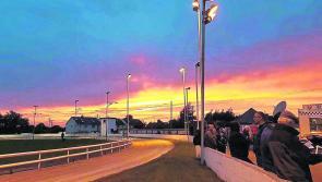 Sun sets on Longford Greyhound Stadium