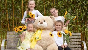 Longford public help raise over €5,000 on Hospice Sunflower days