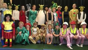 Pitch & Pulse perform Shrek! in Ballymahon's Bridgeways Family Resource Centre