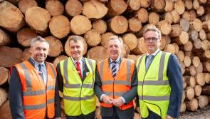 €20 million investment by Longford's Glennon Brothers into flagship operation