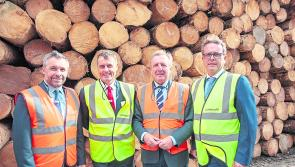 Longford timber firm Glennon Brothers invest €20m in flagship site