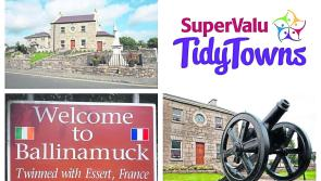 Ballinamuck receive tidy towns results