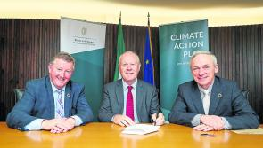 Councils to spearhead climate action reform
