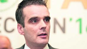 Cattle price rises would be justified based on rising market returns - IFA
