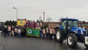 IFA take beef protests to Aldi distribution centre