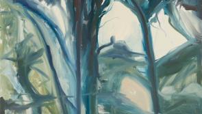 Roscommon Arts Centre to exhibit new work