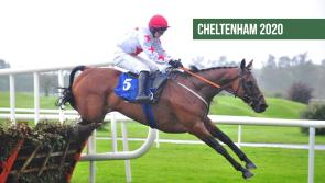 Cheltenham Tips: The horses to back on Day 1 of Cheltenham 2020
