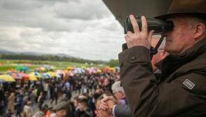 Racing: All eyes on the Punchestown Festival