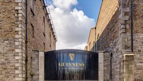 Guinness announces massive fund to support bar staff and ALONE during coronavirus crisis