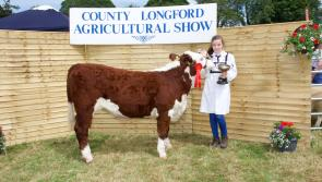 County Longford Agricultural Show postponed with organisers planning the 'show of shows' for 2021