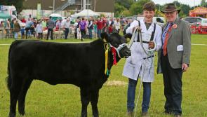 Granard Agricultural Show Committee has made  extremely hard decision to cancel 2020 show