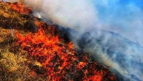 Longford landowners urged to be aware of gorse fire dangers due to dry weather