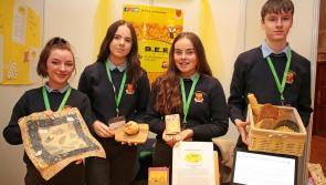 Young Longford entrepreneurs bid for success in 'virtual' national final